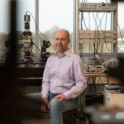 Helmut Kessels over gezonde hersenen en alzheimer